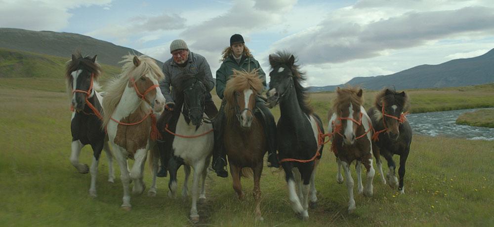 Zgodbe o konjih in ljudeh