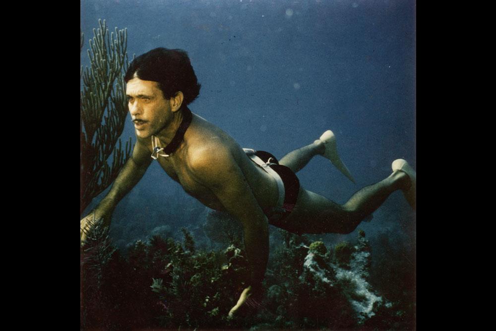 Človek delfin