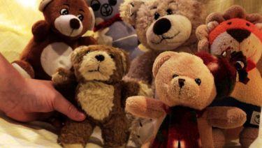 Medvedje zgodbe – Delavnica animiranega filma za otroke