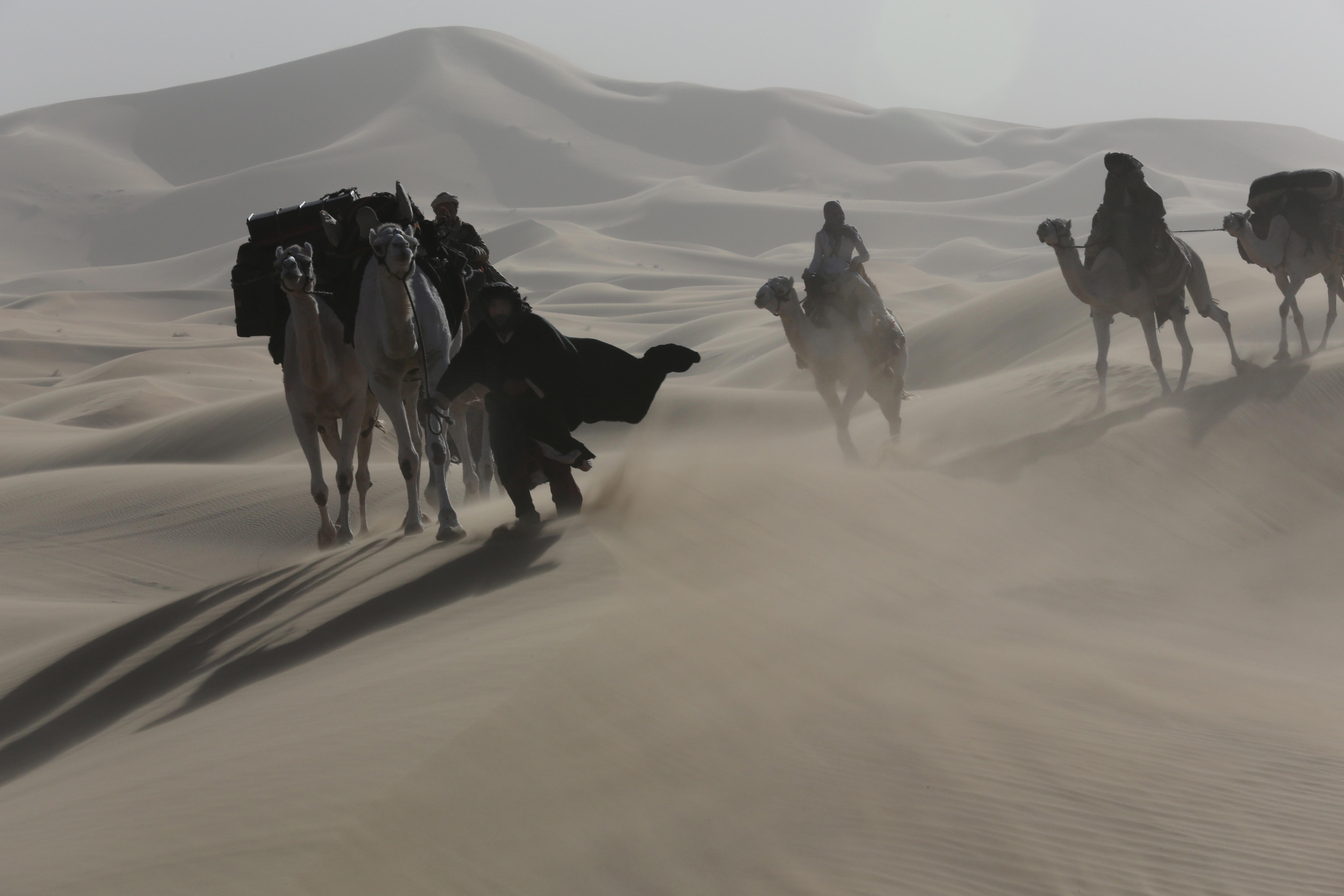 Filmska srečanja ob kavi: pogovor po projekciji filma Puščavska kraljica